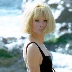 79f56873bf775173a9f11cd092dd1d41--alain-delon-blond
