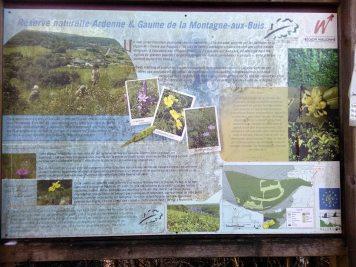 Jour 2 - forêts de Fagnes